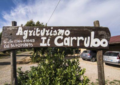 Il carrubo (13) (Copy)
